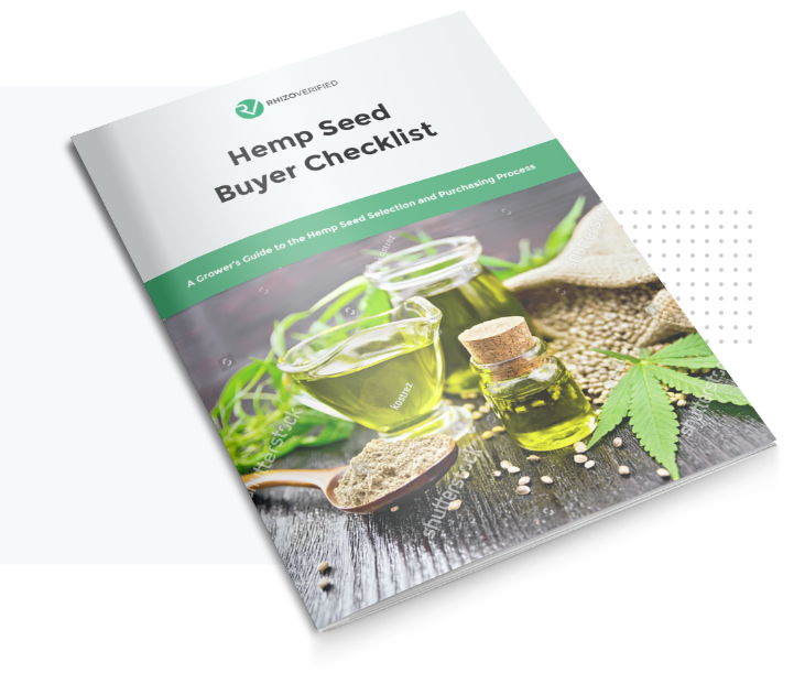 checklist for hemp seed buyers with high-CBD seeds and leaves on cover